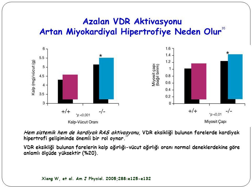 Azalan VDR Aktivasyonu Artan Miyokardiyal Hipertrofiye Neden Olur35