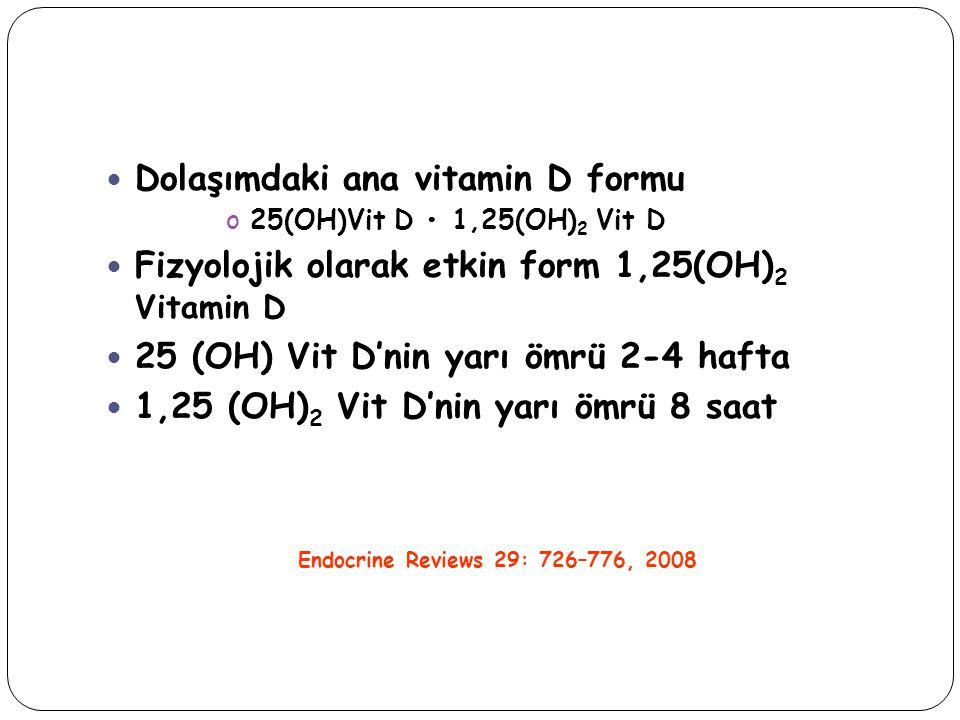 Dolaşımdaki ana vitamin D formu