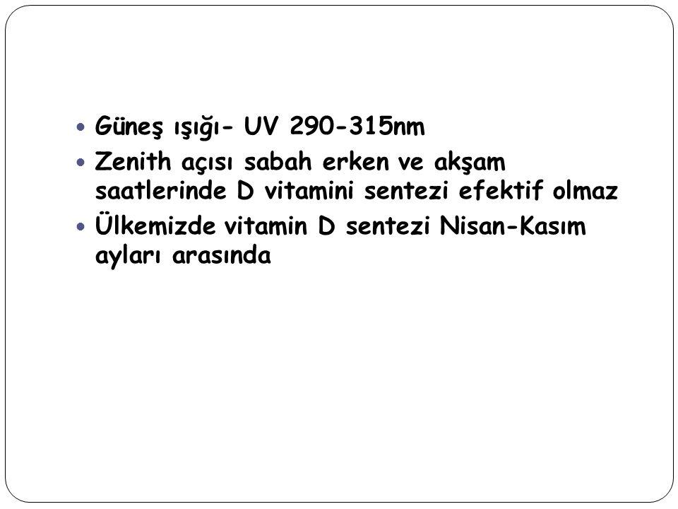 Güneş ışığı- UV 290-315nm Zenith açısı sabah erken ve akşam saatlerinde D vitamini sentezi efektif olmaz.