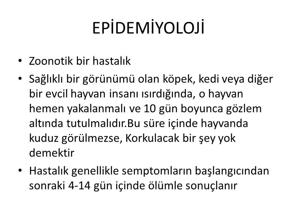 EPİDEMİYOLOJİ Zoonotik bir hastalık