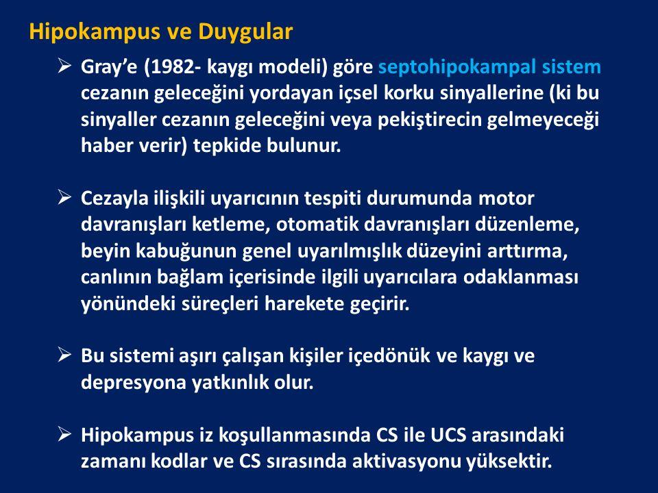 Hipokampus ve Duygular