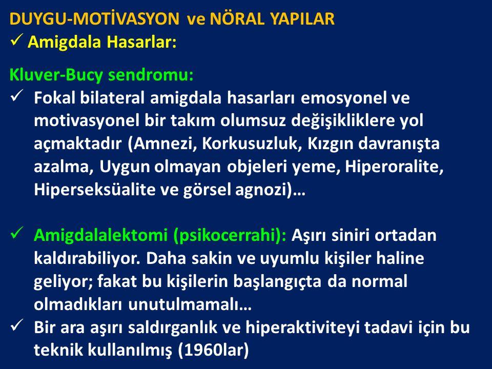 DUYGU-MOTİVASYON ve NÖRAL YAPILAR