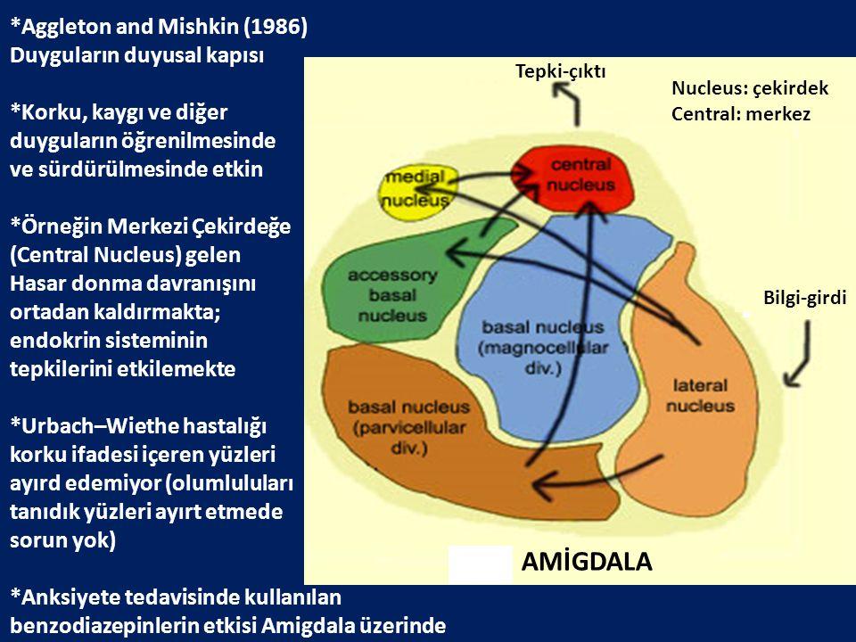 AMİGDALA *Aggleton and Mishkin (1986) Duyguların duyusal kapısı