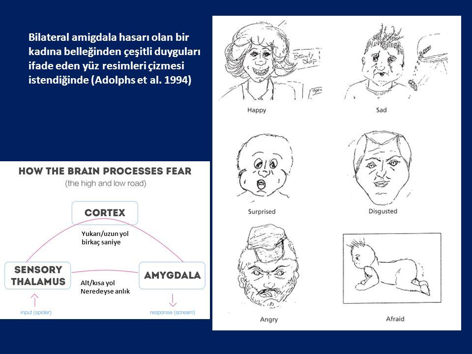 Bilateral amigdala hasarı olan bir kadına belleğinden çeşitli duyguları ifade eden yüz resimleri çizmesi istendiğinde (Adolphs et al. 1994)