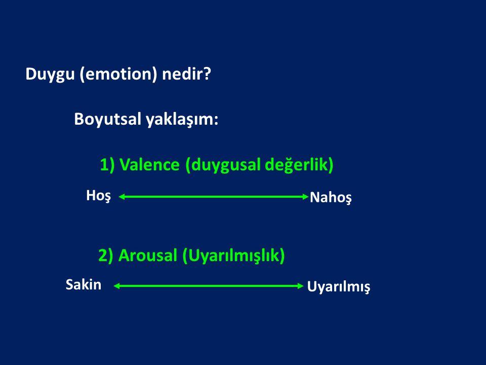 1) Valence (duygusal değerlik)