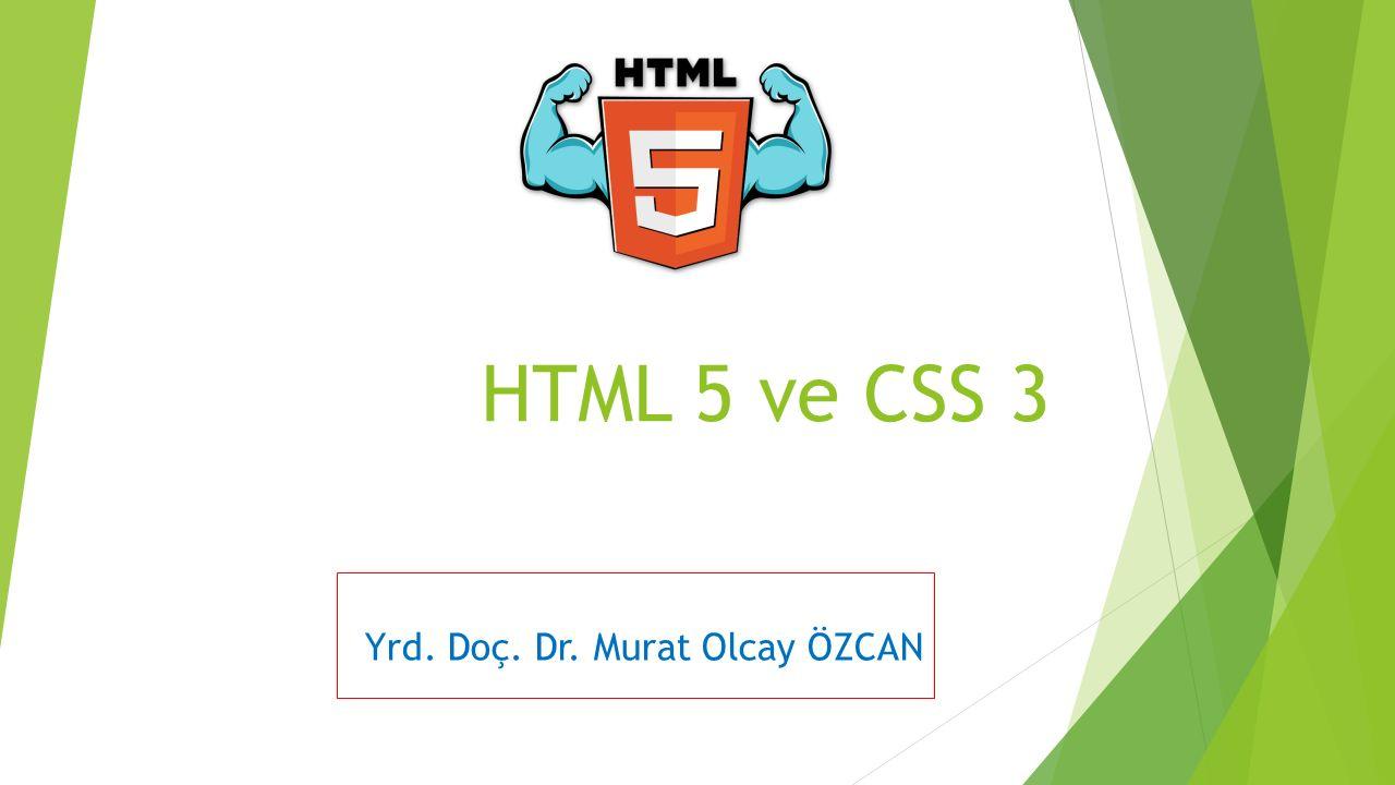 Yrd. Doç. Dr. Murat Olcay ÖZCAN