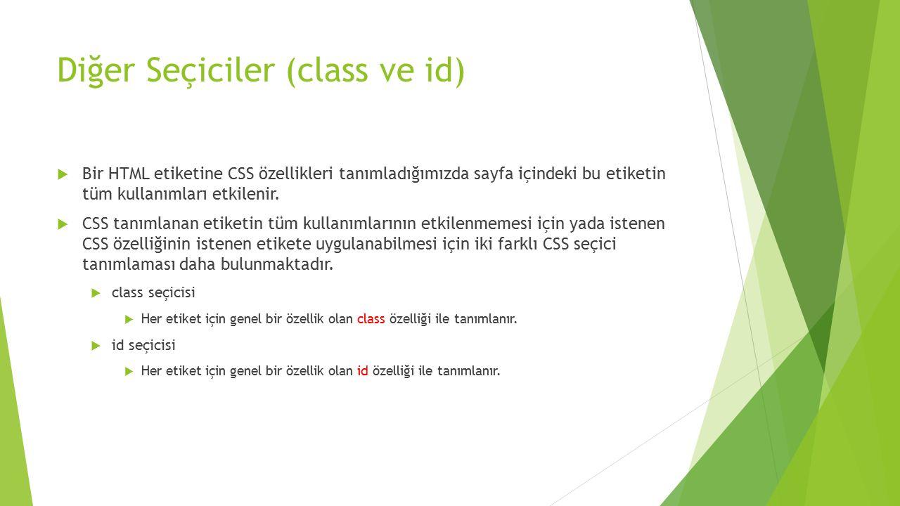 Diğer Seçiciler (class ve id)