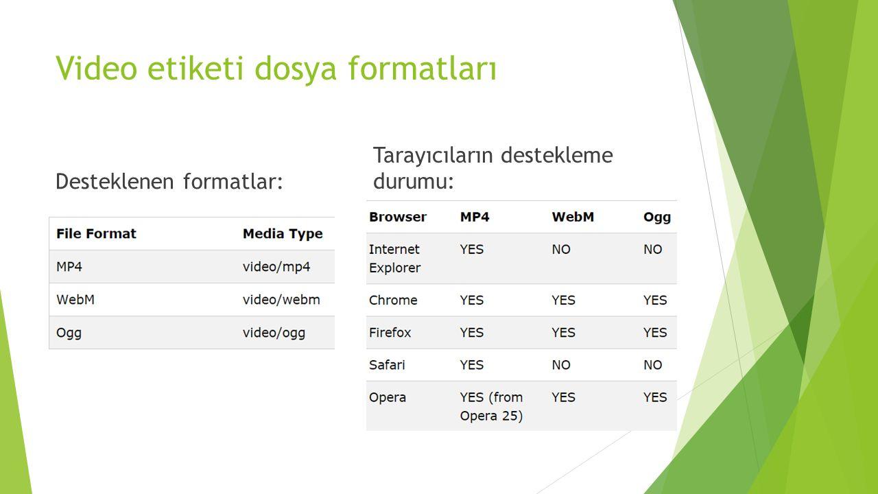Video etiketi dosya formatları
