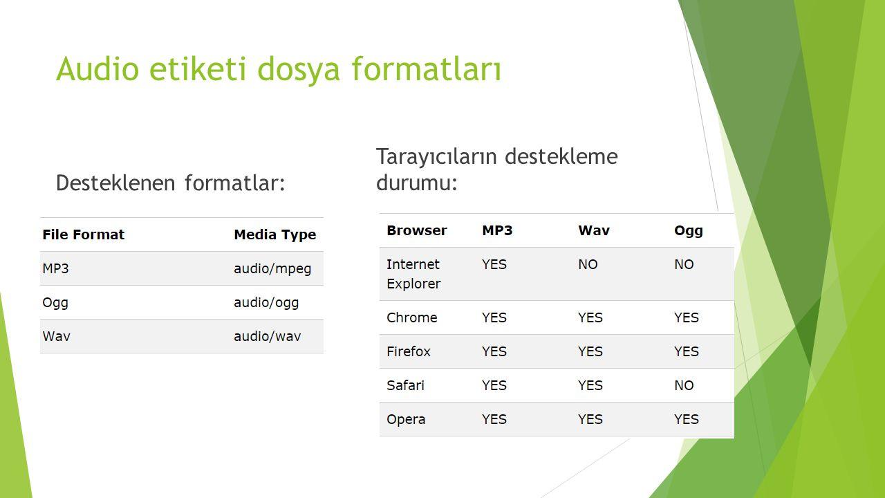 Audio etiketi dosya formatları