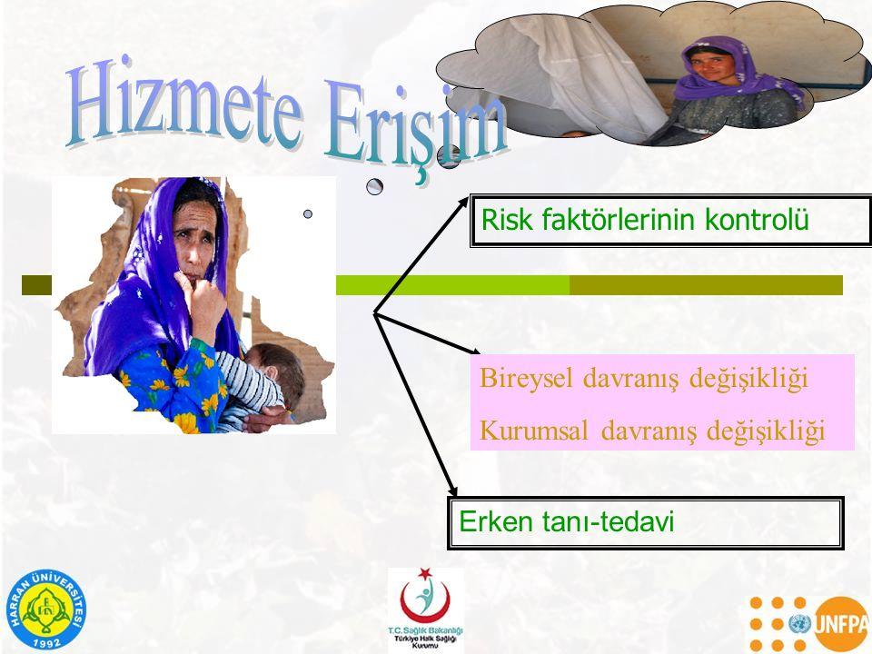 Hizmete Erişim Risk faktörlerinin kontrolü
