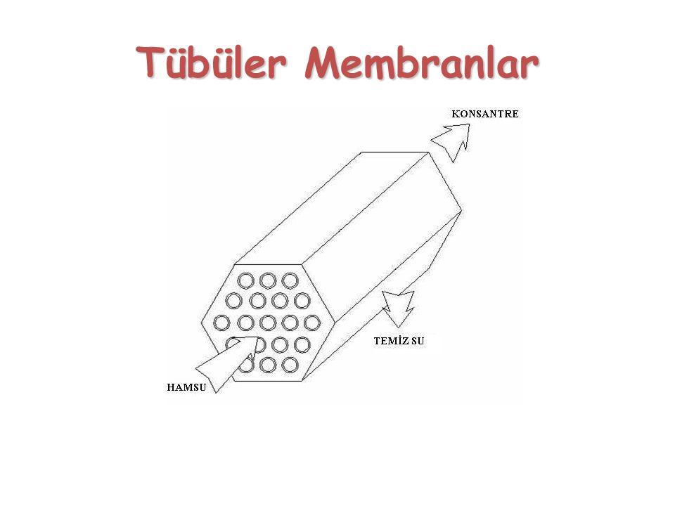 Tübüler Membranlar