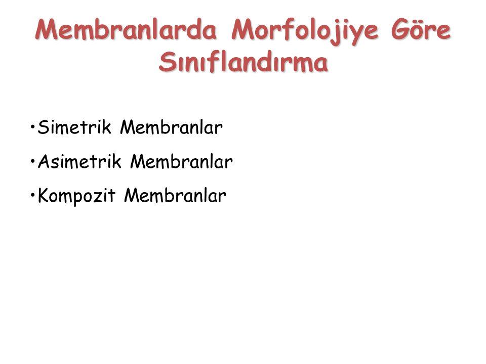 Membranlarda Morfolojiye Göre Sınıflandırma
