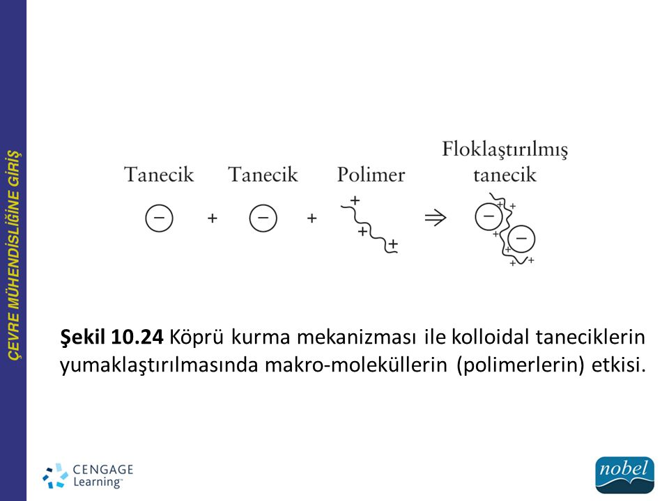 Şekil 10.24 Köprü kurma mekanizması ile kolloidal taneciklerin yumaklaştırılmasında makro-moleküllerin (polimerlerin) etkisi.