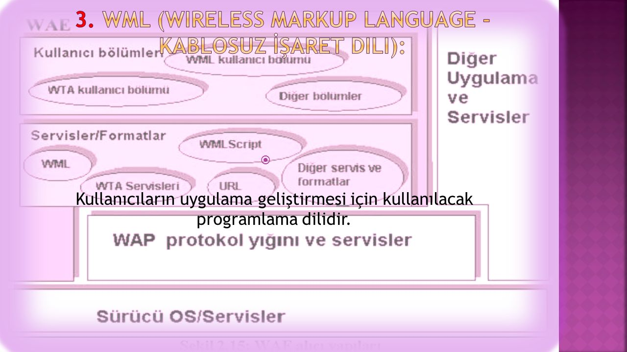3. WML (Wireless Markup Language - Kablosuz İşaret Dili):