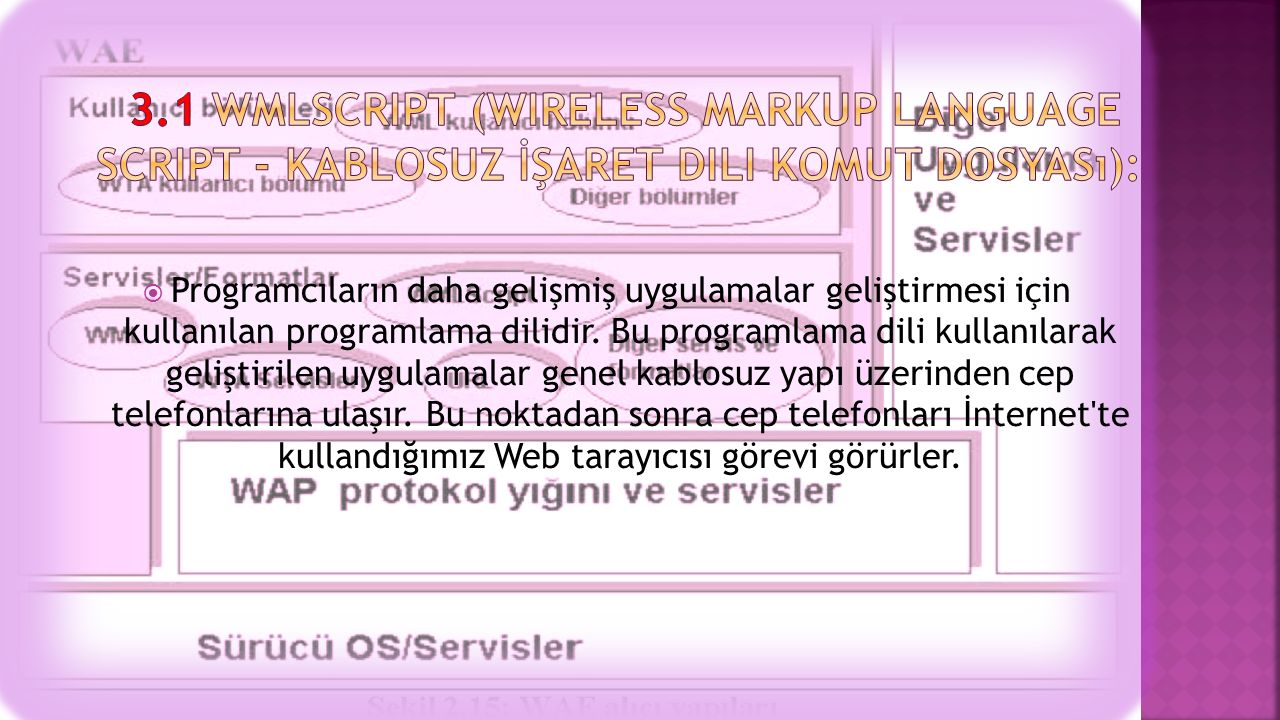 3.1 WMLScript (Wireless Markup Language Script - Kablosuz İşaret Dili Komut Dosyası):