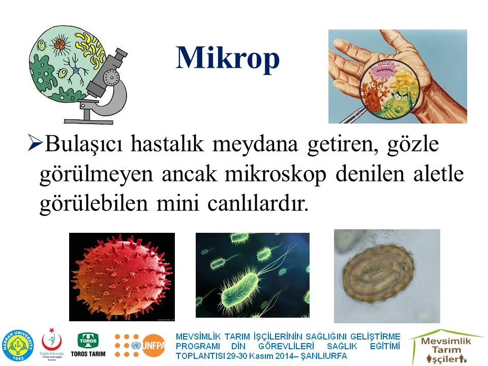 Mikrop Bulaşıcı hastalık meydana getiren, gözle görülmeyen ancak mikroskop denilen aletle görülebilen mini canlılardır.