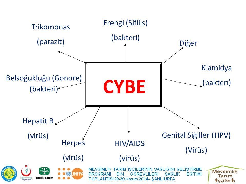 CYBE Frengi (Sifilis) Trikomonas (bakteri) (parazit) Diğer Klamidya
