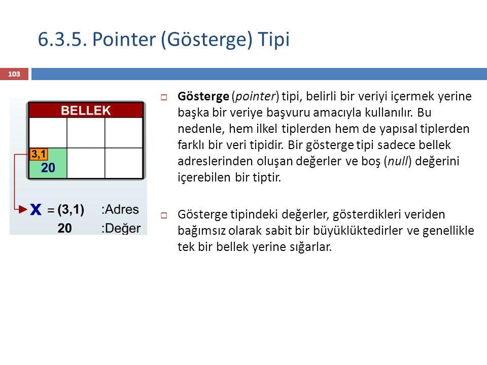 6.3.5. Pointer (Gösterge) Tipi