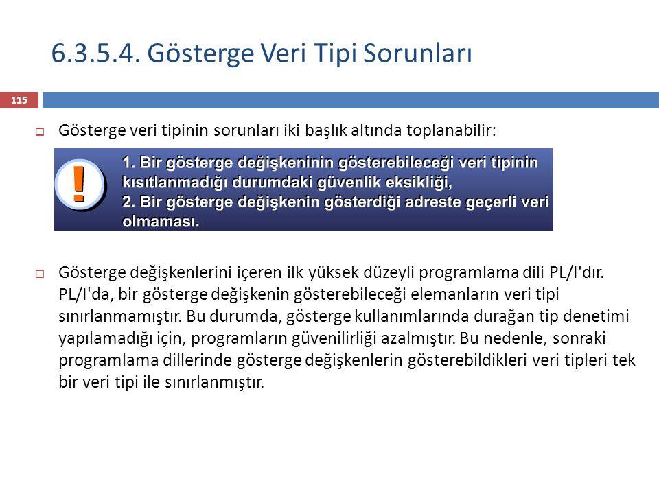 6.3.5.4. Gösterge Veri Tipi Sorunları