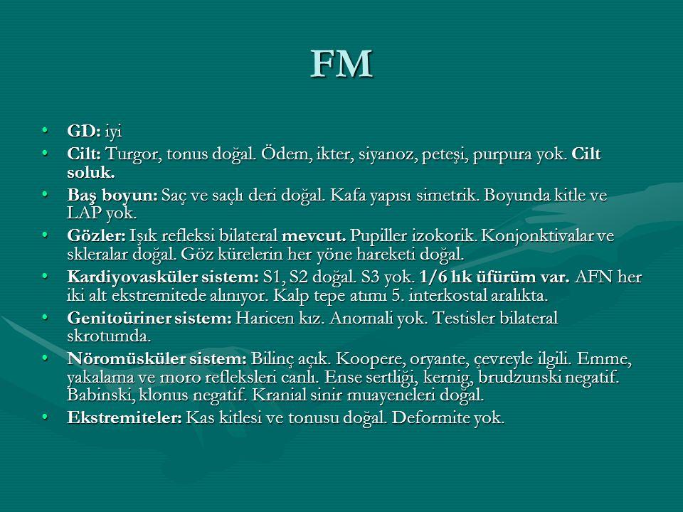 FM GD: iyi. Cilt: Turgor, tonus doğal. Ödem, ikter, siyanoz, peteşi, purpura yok. Cilt soluk.