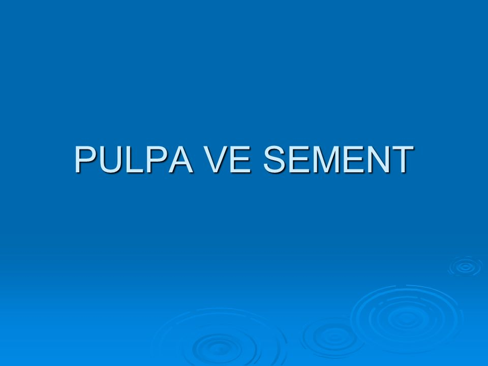 PULPA VE SEMENT
