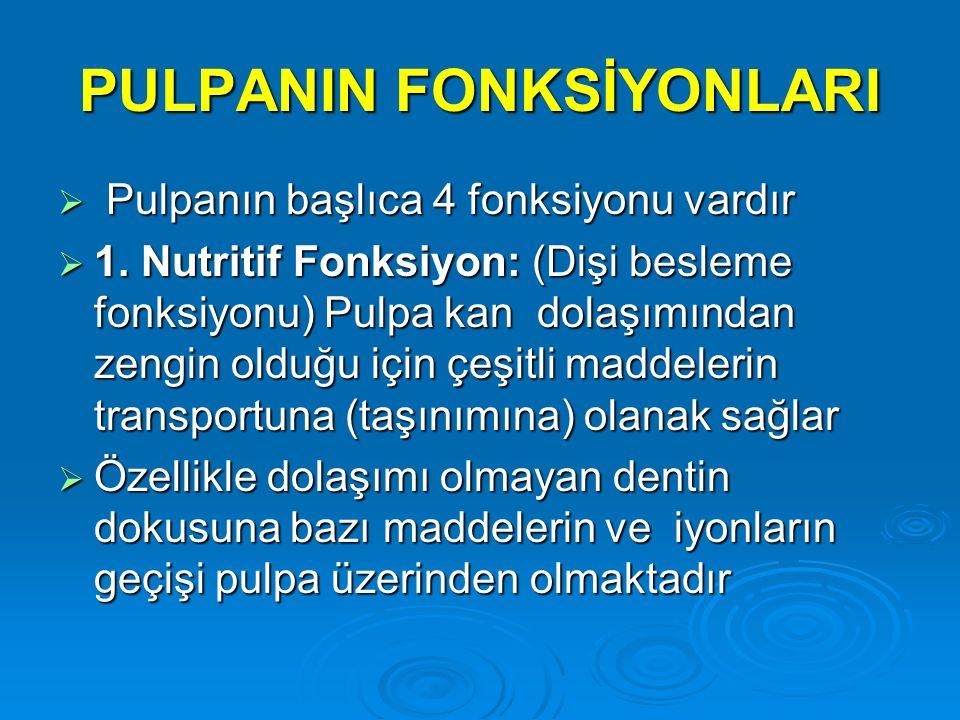 PULPANIN FONKSİYONLARI