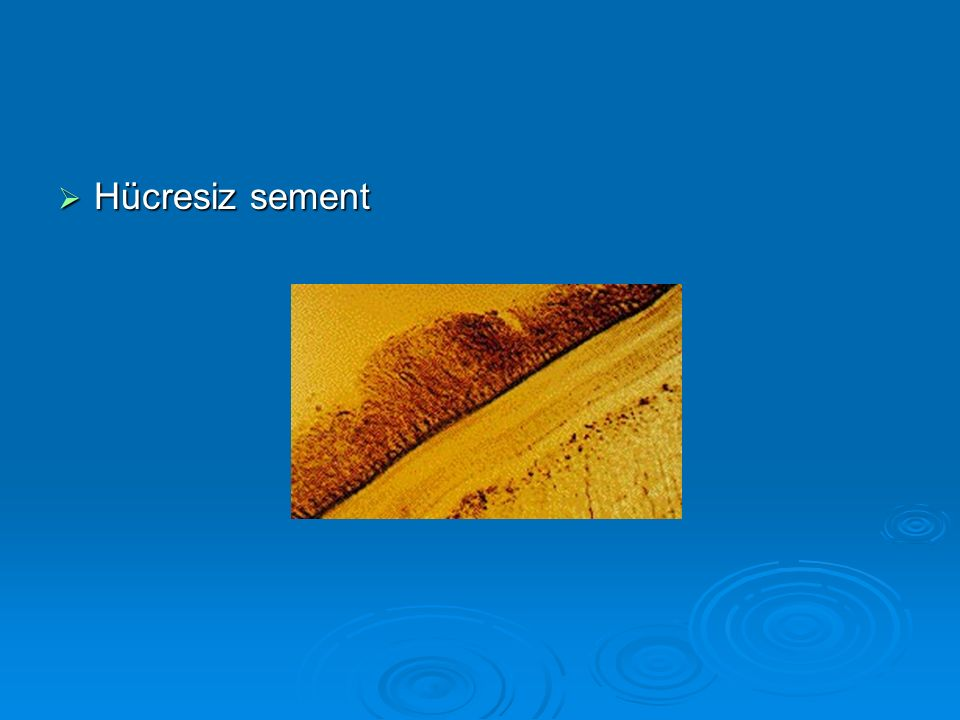 Hücresiz sement