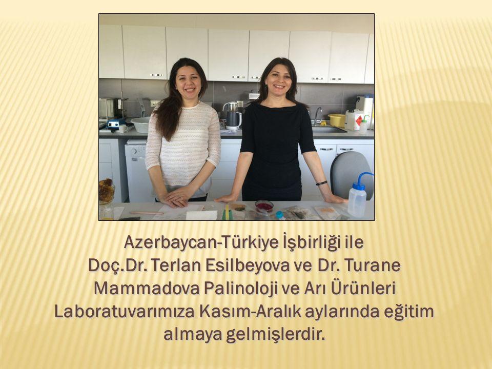 Azerbaycan-Türkiye İşbirliği ile