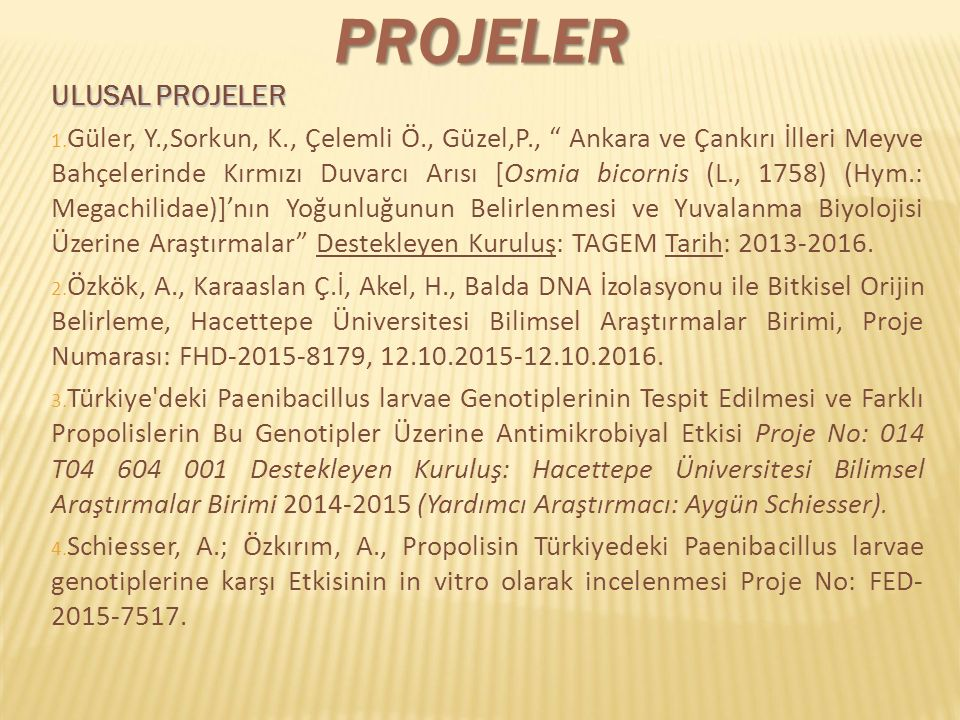 Projeler ULUSAL PROJELER