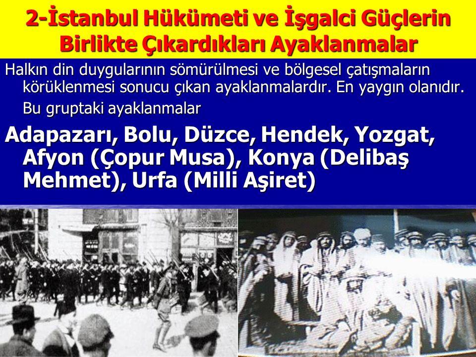 2-İstanbul Hükümeti ve İşgalci Güçlerin