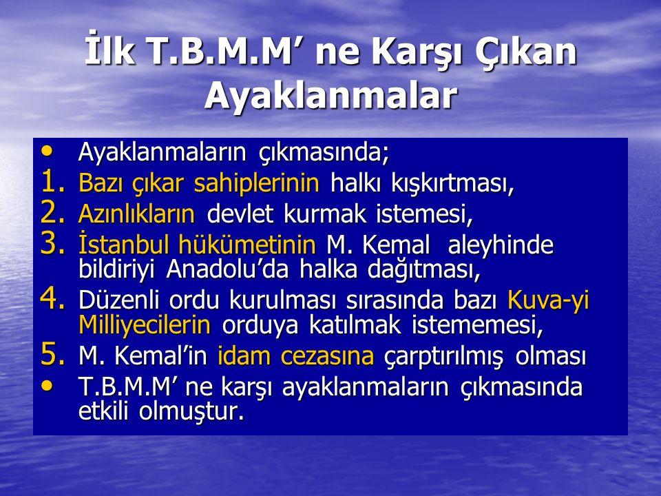 İlk T.B.M.M' ne Karşı Çıkan Ayaklanmalar