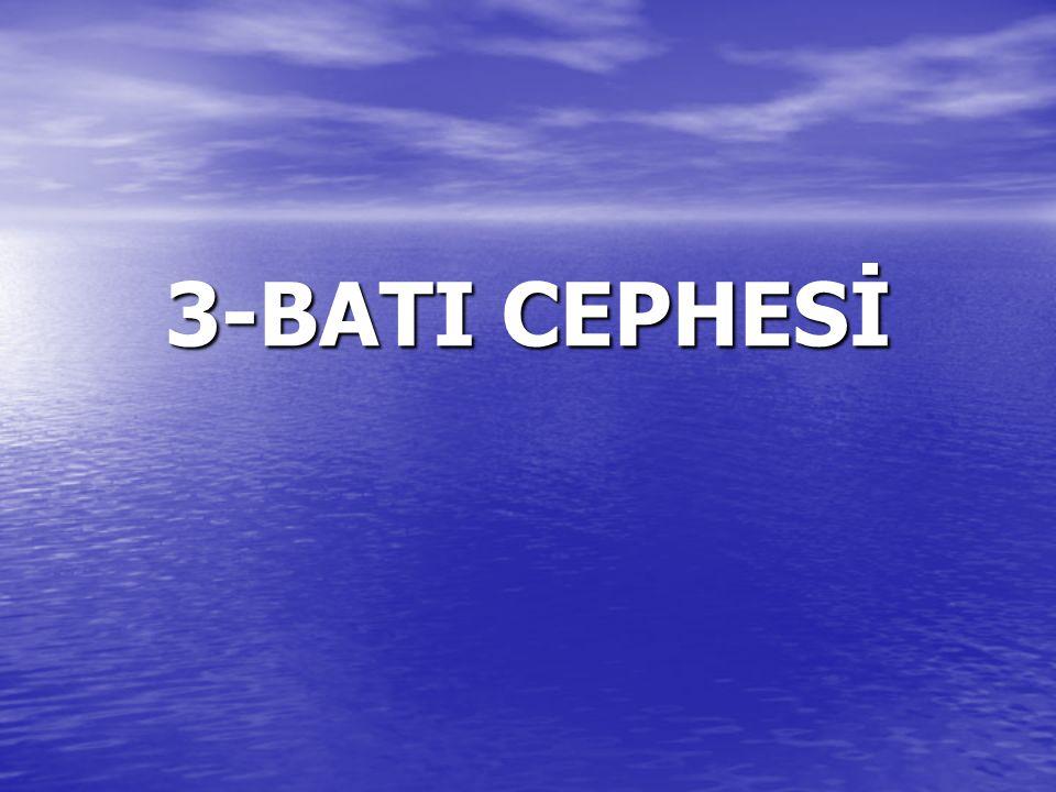 3-BATI CEPHESİ