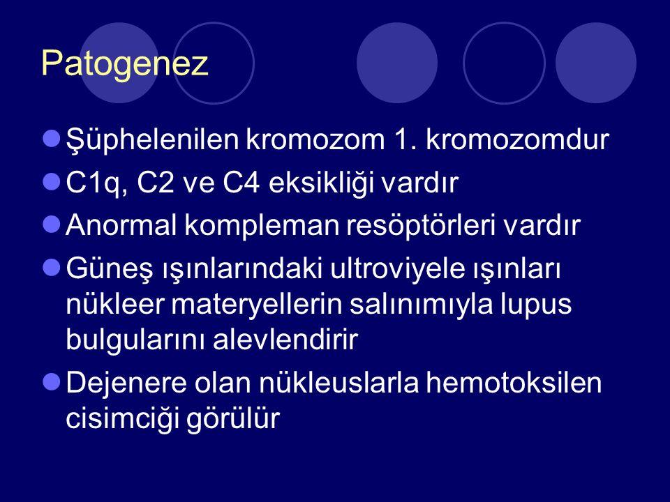 Patogenez Şüphelenilen kromozom 1. kromozomdur