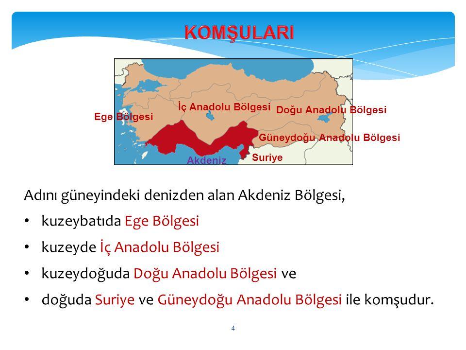 KOMŞULARI Adını güneyindeki denizden alan Akdeniz Bölgesi,