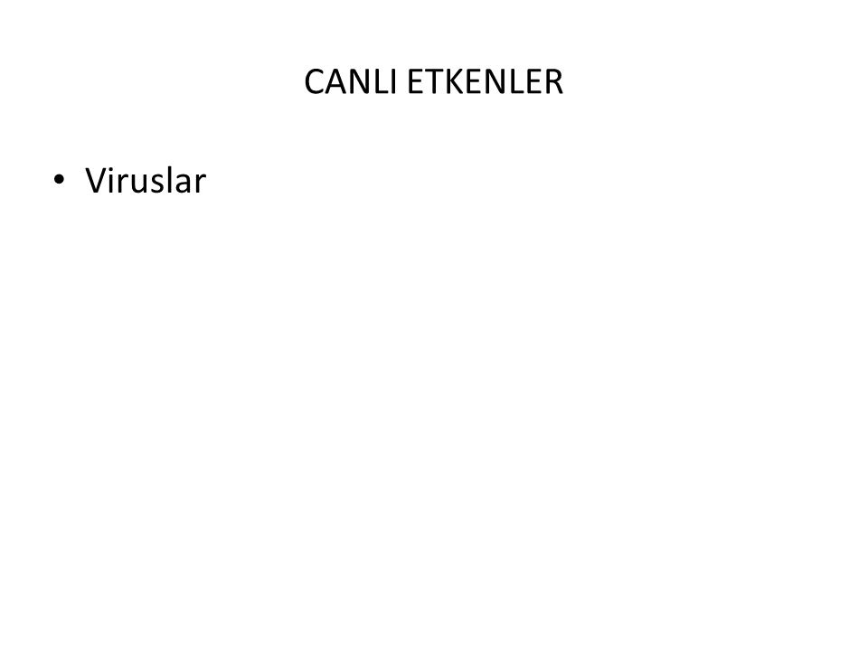 CANLI ETKENLER Viruslar