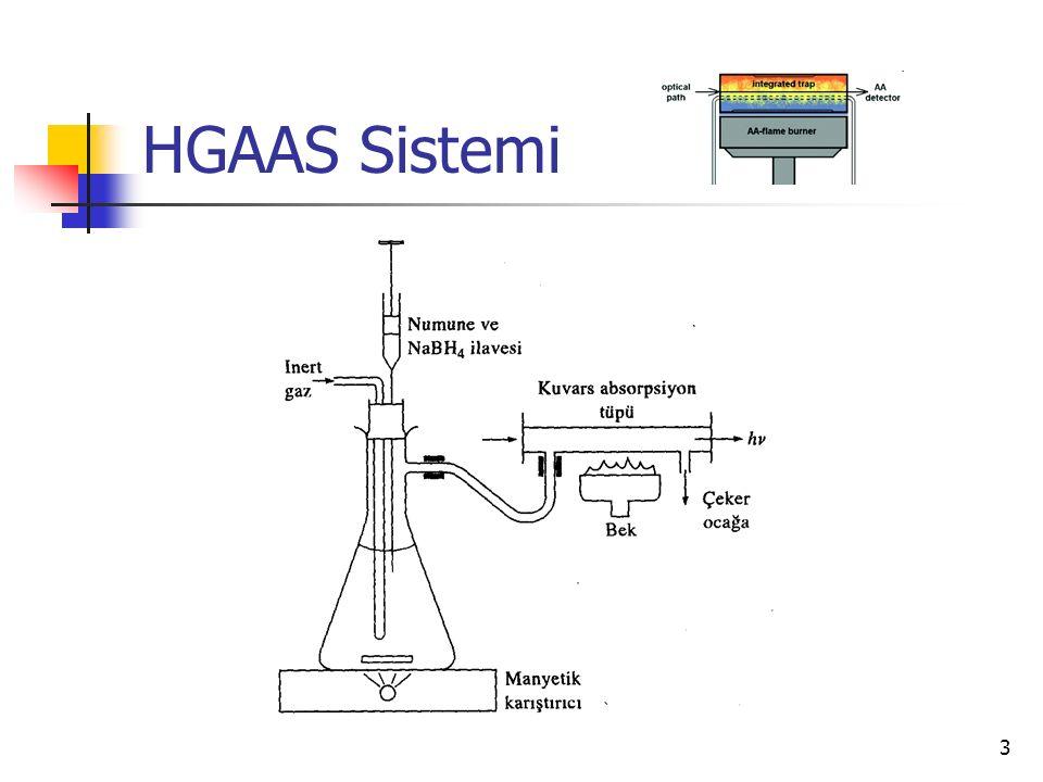HGAAS Sistemi