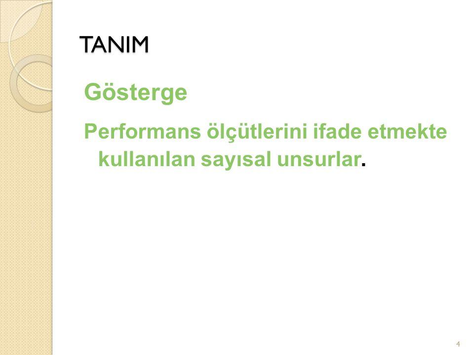 TANIM Gösterge Performans ölçütlerini ifade etmekte kullanılan sayısal unsurlar.