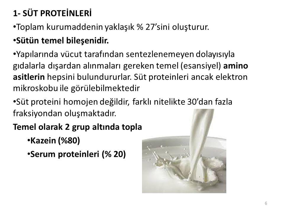 1- SÜT PROTEİNLERİ Toplam kurumaddenin yaklaşık % 27'sini oluşturur. Sütün temel bileşenidir.