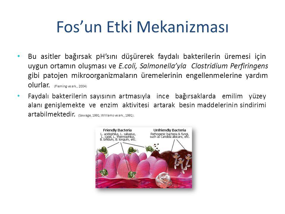 Fos'un Etki Mekanizması