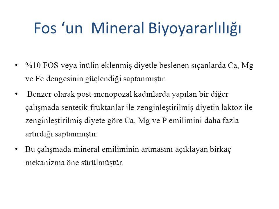 Fos 'un Mineral Biyoyararlılığı