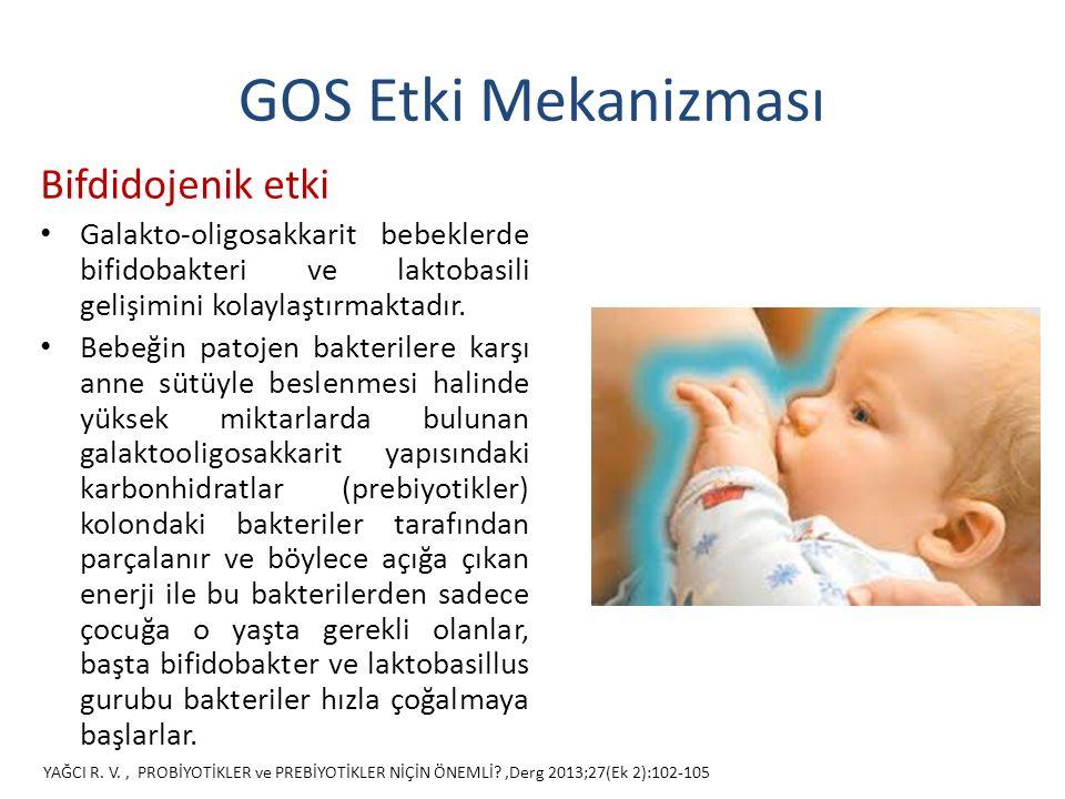 GOS Etki Mekanizması Bifdidojenik etki