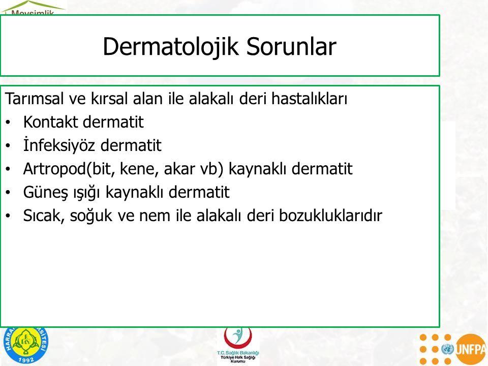 Dermatolojik Sorunlar