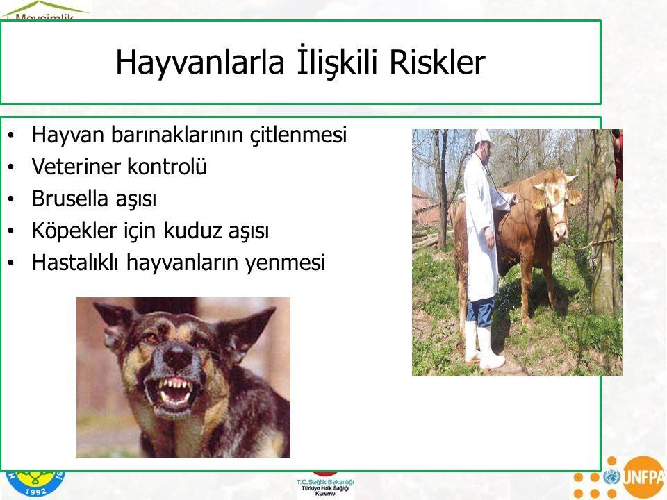 Hayvanlarla İlişkili Riskler