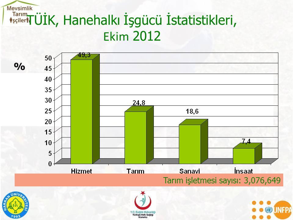 TÜİK, Hanehalkı İşgücü İstatistikleri, Ekim 2012