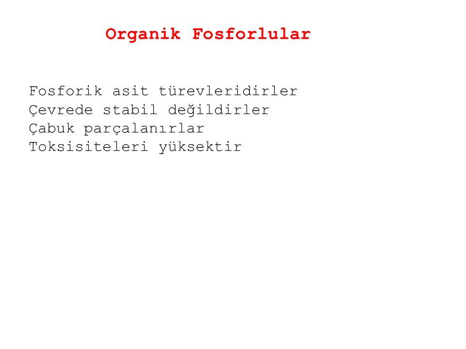 Organik Fosforlular Fosforik asit türevleridirler