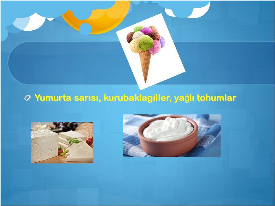 Yumurta sarısı, kurubaklagiller, yağlı tohumlar
