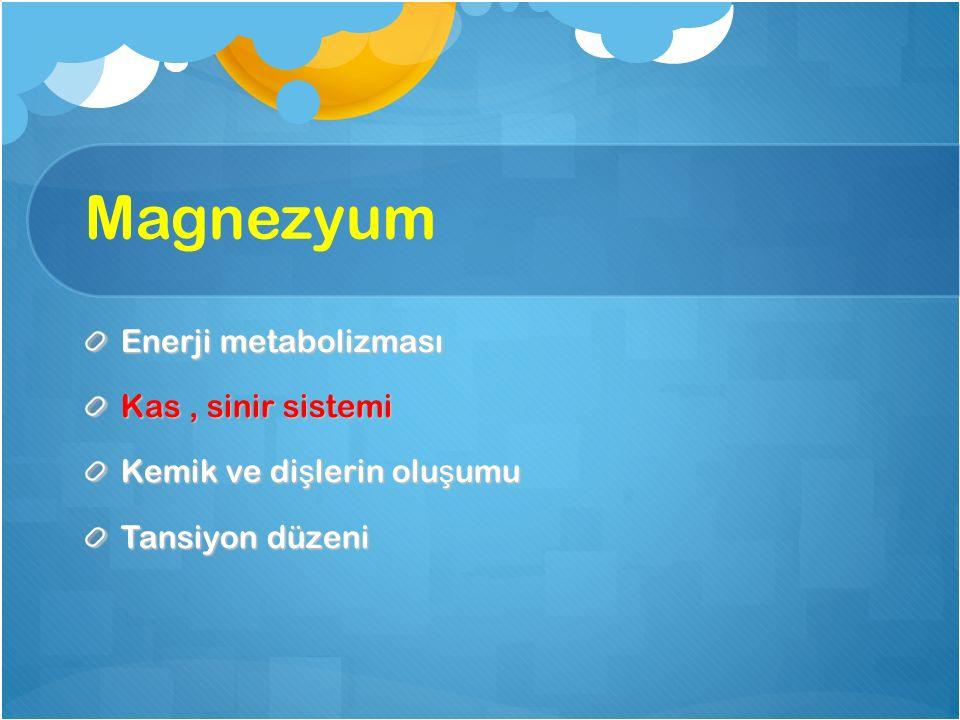 Magnezyum Enerji metabolizması Kas , sinir sistemi