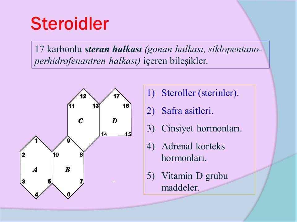 Steroidler 17 karbonlu steran halkası (gonan halkası, siklopentano-perhidrofenantren halkası) içeren bileşikler.