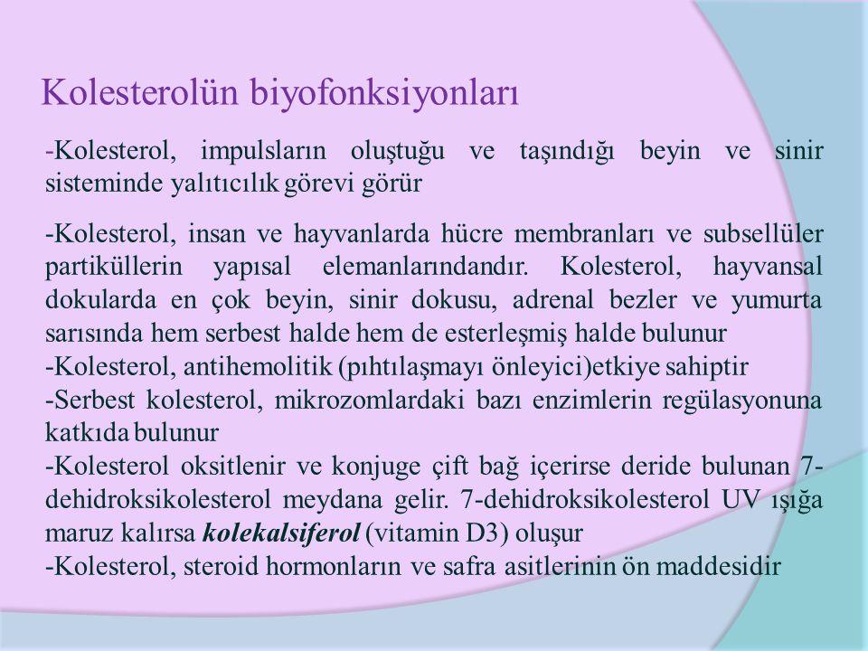 Kolesterolün biyofonksiyonları