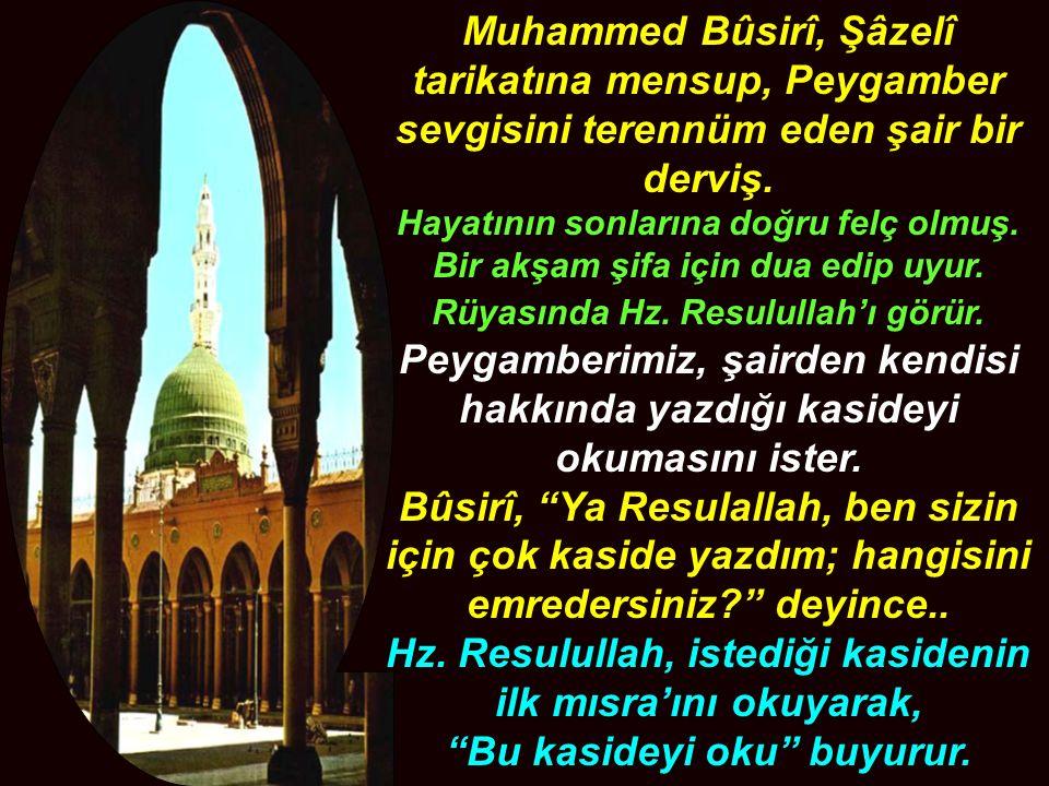 Muhammed Bûsirî, Şâzelî tarikatına mensup, Peygamber sevgisini terennüm eden şair bir derviş.